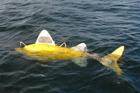 Pollution Hunting Robo Fish
