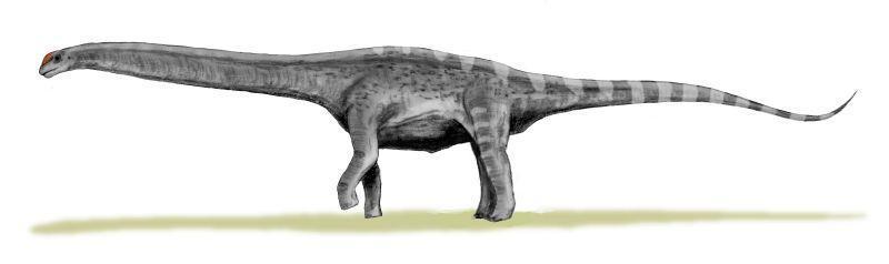Argentinosaurus_BW (1)